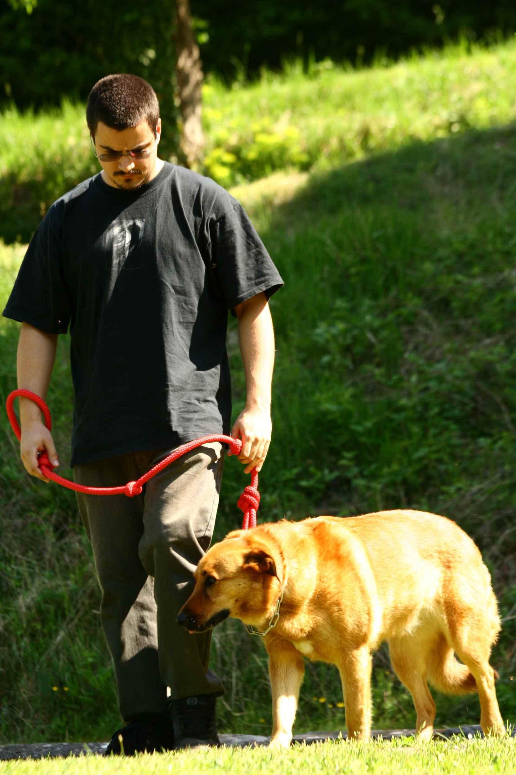 Marche avec kayla