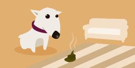 Doggy Zen