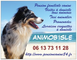 Carte de visite Animob'Isle
